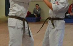 The road to black belt