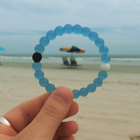 Life with Lokai