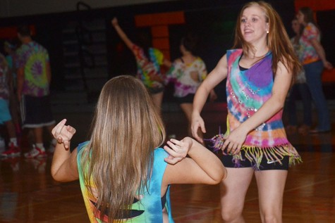 Tigerstock raises controversy over dance host