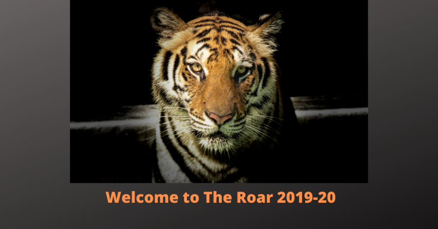 Welcome to The Roar Part 3